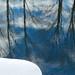 Blue Pond Reflection