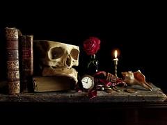 Vanitas I (Gabriel J. Bell) Tags: vanitas stilllife naturalezamuerta naturemorte skull calavera bodegn