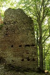 Burgruine - Ruine der Burg - Jagdburg Höfen ( auch Turm zum Stocken oder Friedberg - Baujahr 12. Jahrhundert - Erwähnt 1350 - Aufgegeben 1642 - Höhenburg castello rovina castle ruin château ) in Höfen bei T.hun im Berner Oberland im Kanton Bern der Schwei (chrchr_75) Tags: chriguhurnibluemailch christoph hurni schweiz suisse switzerland svizzera suissa swiss chrchr chrchr75 chrigu chriguhurni mai 2015 hurni150524 kantonbern ruine burg burgruine jagdburg höfen jagdburghöfen berner oberland albumregionthunhochformat hochformat thunhochformat albumzzz201505mai castillo ruin ruïne руины rovina ruina mittelalter geschichte history wehrbau frühgeschichte burganlage festung albumschweizerschlösserburgenundruinen albumburgruinenkantonbern bärn sveitsi sviss スイス zwitserland sveits szwajcaria suíça suiza susisa kanton bern