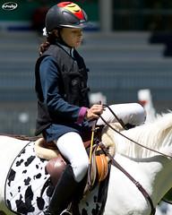 CS Nacional de Ponis (Myprofe) Tags: madrid horse pony salto ponies countryclub rider equestrian showjumping ponis hipica saltodeobstculos clubdecampovillademadrid ccvm saltodecaballo campeonatodesalto csnacionaldeponis