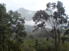 DSC03567 (Gokul Chakrapani) Tags: waterfalls karnataka westernghats bolle charmadi