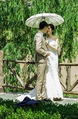 boda china (Picabal) Tags: love amor inlove enamorados chinesewedding bodachina