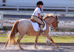IMG_2594 (SJH Foto) Tags: horse show hunter class rider ribbon award teen teenagers tweens girls