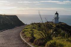 End of the road, Cape Reinga, New-Zealand (kevin2367) Tags: newzealand nouvellezlande capereinga cape lighthouse phare lastlight endoftheroad instagramkevin23230 kevinfernandez canon500d landcape paysage northland northisland endoftheworld findelaroute dernirelumire