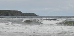 Listen to the sea, Strathy Bay, Strathy, Sutherland, July 2016 (allanmaciver) Tags: strathy bay waves watch wait admire enjoy delight listen breeze sea air coast north sutherland grey skies misty rain allanmaciver