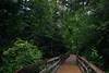 IMG_4249.jpg (Backpacking With Bacon) Tags: washington northerncascades hiking mtpilchuck granitefalls unitedstates us