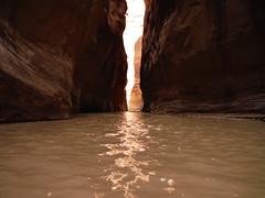 DSCF3093 (newmexicorob) Tags: pariariver canyon gorge narrows water rock sandstone cliffs navajosandstone pariacanyonvermilioncliffswilderness utah