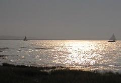 Silver Sea, Morston (NJKent) Tags: uk sea silver norfolk yachts morstonquay
