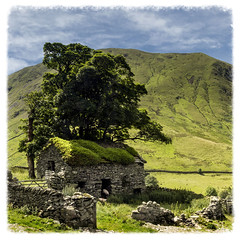 Hartsop (Katybun of Beverley) Tags: tree barn rural landscape scenery sheep outdoor lakedistrict ruin scenic scene cumbria stonewall patterdale hartsop