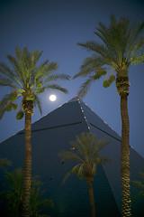 Luxor, Moon and Palms  -  Las Vegas (fotographis) Tags: leica moon night pyramid lasvegas sigma palmtrees moonlight luxor leicam 50100mm sigmaart leicam240