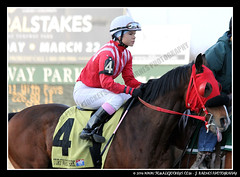 IMG_9599 (femalejockeys) Tags: femalejockeys turfway park female athletes horse racing horses thoroughbred kentucky derby