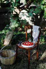 Picnic (Stefi92) Tags: picnic food photography folk summer spring cake strawberry morning stilllife styling