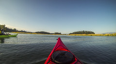 La Conner Kayaking-015 (RandomConnections) Tags: laconner skagitriver skagitriverestuary swinnomishchannel washington washingtonstate kayaking paddling unitedstates us