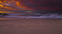 Tamarama Sydney (Tonitherese) Tags: waves ocean sydney beach landscape sescape tamarama sea