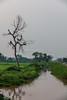 0W6A7150 (Liaqat Ali Vance) Tags: nature colors of punjab gujranwala village life google liaqat ali vance photography pakistan
