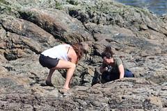 Looking at Jellyfish (m.gifford) Tags: vancouverisland bc britishcolumbia tidepools