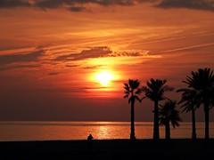 Colores del atardecer (Antonio Chacon) Tags: andalucia atardecer marbella mlaga mar mediterrneo costadelsol espaa spain sunset