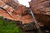 20150523 Emerald Pools (Zion)-6 (Tony Castle) Tags: park nature forest utah us waterfall unitedstates hurricane national pools zion znp emeral