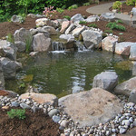 "Relaxing Koi Pond by Greenhaven Landscapes <a style=""margin-left:10px; font-size:0.8em;"" href=""http://www.flickr.com/photos/117326093@N05/18325054611/"" target=""_blank"">@flickr</a>"