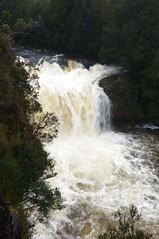 Pencil Pine Falls (shinbonerbaz) Tags: mountain sony australia tasmania alpha dt cradle a57 α pencilpinefalls minoltaamount sal18250 sonydt18250mm