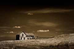 As Time Goes By... (EdBob) Tags: farmhouse abandoned palouse easternwashington sepia blackwhite blackandwhite bw toned monochrome monochromatic whitmancounty wood wooden homestead field agriculture agricultural clouds sky lonely isolated wheat vintage dilapadated rundown classic houseonthehill old usa america steptoebutte 2016 edmundlowephotography edmundlowe allmyphotographsare©copyrightedandallrightsreservednoneofthesephotosmaybereproducedandorusedinanyformofpublicationprintortheinternetwithoutmywrittenpermission wwwedmundlowephotocom