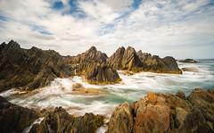 Wild Tarkine Coast (laurie.g.w) Tags: ocean seascape water coast rocks waves shoreline dramatic rocky australia kelp tasmania coastline rmc waterscape tarkine tokina17mm