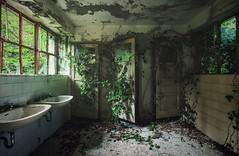 back to nature (Nils Grudzielski) Tags: lostplaces abandonedplaces abandoned urbanexploration urban marode morbide nature laub rotten ruin decay old forgotten