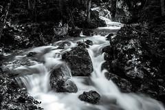 Water is life (CHCaptures) Tags: longexposure blackandwhite water monochrome creek river blackwhite waterfall stream wasser wasserfall bach fluss schwarzweis sonyilce7 sel2470z