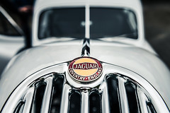 Made In England (Sean Batten) Tags: ilfracombe england unitedkingdom gb jaguar classiccar nikon d800 2470 car badge