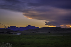 Sky fish (Dave Arnold Photo) Tags: mt mont montana deerlodge rockcreek cattle company barn big outdoor arnold davearnold davearnoldphotocom pic picture photo photography photograph photographer milf tour wife hot naked idyllic landscape nude spread sky ass awesome canon 5d mkiii us usa upskirt ranch sex farm sexy beautiful serene peaceful huge high summer powellcounty wild pussy cow tit fantastic american scenic 24105mm cloud grass farmyard rural cloudshape fish rancher west cowboy cloudformation fishshape