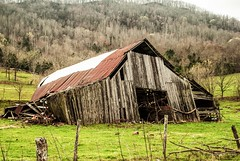 Laying Down (Back Road Photography (Kevin W. Jerrell)) Tags: barns farms dilapidated fallingdown nikond60 backroadphotography stickleyville leecountyva