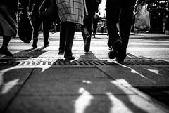 being (ewitsoe) Tags: street city summer people urban blackandwhite bw woman cinema man film feet monochrome lady 35mm bag walking nikon europe shadows pants legs streetphotography tram poland crosswalk cinematic poznan d80 ewitsoe
