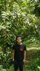 mi primo (Mayan_princess) Tags: chiapas argovia finca resort caf coffee kaffee paraso paradise vegetacin vegetation verde green ro river spa relajacin relax forest selva orgnico autosostenible