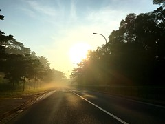 Road To Forest (teckhengwang) Tags: glare rays sun landscape morning sunrise