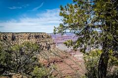 Maricopa point . . . (Dr. Farnsworth) Tags: grandcanyon us maricopa point maricopapoint rocks layers nps nationalparkservice az arizona spring april2016