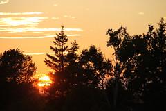 Upton sunset (Sarah Wesley Farm) Tags: sunset upton skies clouds