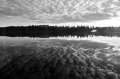 Norway and Sweden_191 (jjay69) Tags: water lake reflection reflect stillwater image calm calmness serene still tranquil tranquility peace peaceful quiet nature adventure tourism scenic river travel summer nonurban outdoor sun sunlight countryside eco ecology flow blackandwhite bw blackwhite monochrome artistic