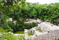 Cenote Xtoloc (littlestschnauzer) Tags: mexico cenote water filled sink hole sinkhole chichen itza chichenitza tourist attraction 2016 maya mayan xtoloc tropical vegetation