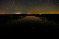 UpsideDown Big Dipper_46821-.jpg (Mully410 * Images) Tags: burnettcounty night northernlights crexmeadowsstatewildlifearea crexmeadows colorefexpro4 lake longexposure bigdipper aurora reeds astronomy wisconsin phantomlake asterism citylights reflections stars
