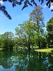 Spring Grove (#KPbIM) Tags: road trip travel blue reflection green nature water spring pond cincinnati may arboretum serenity 2015 springgrovecemetery