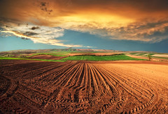 Spring shadow (Katarina 2353) Tags: sunset field landscape serbia vojvodina serbiainspired