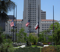 For Dallas -- Also From Yesterday (Robb Wilson) Tags: grandpark downtownla losangeles cityhall flagsathalfmast dallastragedy freephotos