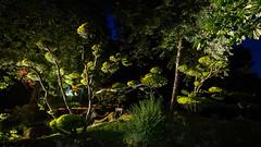 DSC05467 (regis.verger) Tags: temple zen nuit parc nocturne asiatique vgtal maulvrier