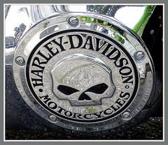 Harley-Davidson im Hochsauerland (Horst Erkrath) Tags: harley harleydavidson biker moped erkrath motorrad sauerland winterberg hochsauerland kahlerasten vmotor horstbostelmann