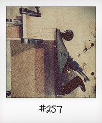 """#DailyPolaroid of 11-6-16 #257 • <a style=""""font-size:0.8em;"""" href=""""http://www.flickr.com/photos/47939785@N05/28299243464/"""" target=""""_blank"""">View on Flickr</a>"""