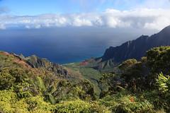 kalalau valley (1600 Squirrels) Tags: 1600squirrels photo 5dii lenstagged canon24105f4 landscape kalalau valley napali coast pali pacific ocean northshore kauai kauaicounty hawaii usa lookout westside