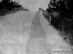 En haut de la dune (JEAN PAUL TALIMI) Tags: dune gironde latestedebuch sable talimi texture plage deux chemins sentiers sudouest france noiretblanc nature noir bw solitude silouettes aquitaine monochrome