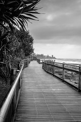 Sunshine Coast Boardwalk (k009034) Tags: 500px wooden australia caloundra copy space pacific queensland boardwalk clouds no people ocean oceania palm tree pandanus path rail sea sky sunshine coast travel waves weather teamcanon copyspace nopeople palmtree sunshinecoast