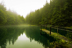Smoke on the Water (Goddl) Tags: nebel dunst see wald morgens mystisch mist lake morning forest mystic