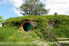 Baggins (ficktionphotography) Tags: books flowers green hobbiton hobbits landscapes literature lordoftherings lotr movies movieset newzealand thehobbit tolkien trees
